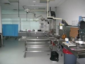 forensic-pathology-1