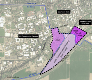 Nishi Workshop Draws Questions and Discussion of Proposed Development