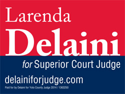 Delaini For Judge