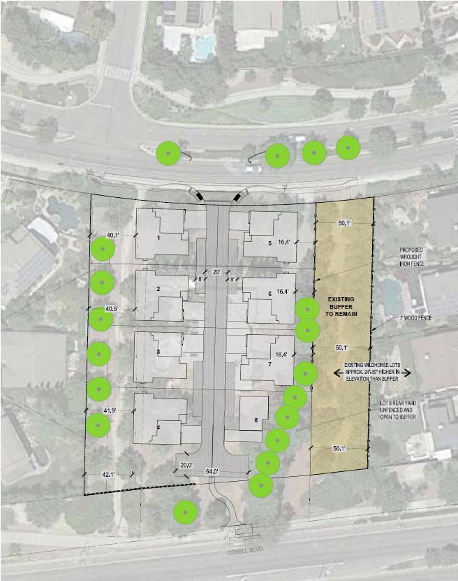 Paso Fino Developers Revamp Proposal, Saving Trees, Reducing Houses