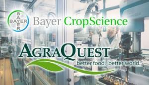 Missed Opportunities Redux: Davis Still Reeling From Loss of Bayer