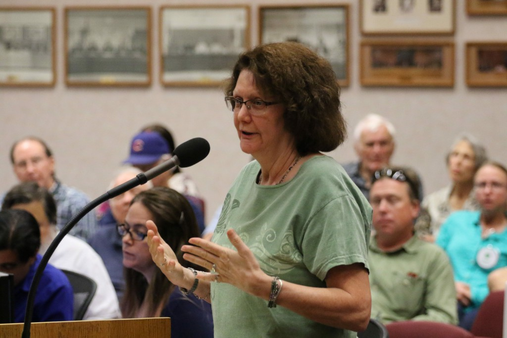 Eileen Samitz discusses housing
