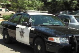 Two Davis Police Officers Assaulted by Picnic Day Crowd