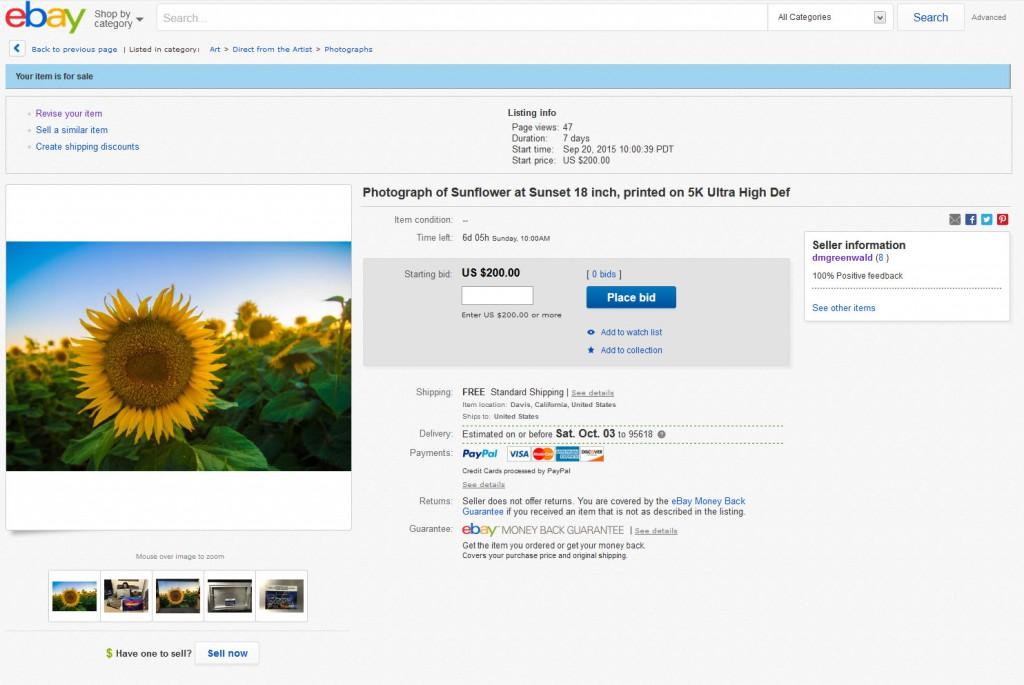 Ebay-SS