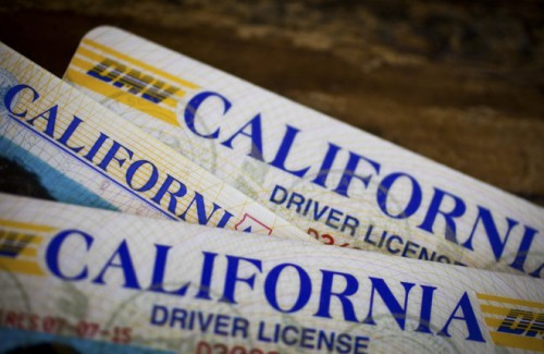 ca-drivers-license