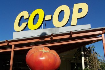 Termination of Co-op GM Contract Leads to Questions, Calls to Remove Board