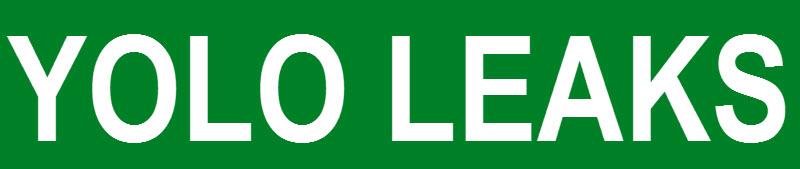 Yolo-Leaks