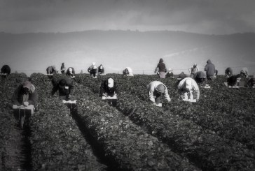 Governor Signs Historic Farmworker OT Protection with Little Fanfare