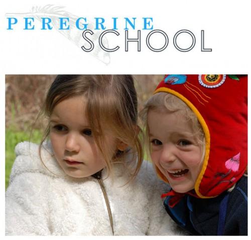 Peregrine-School