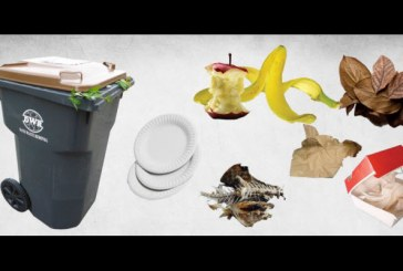City Claims Early Success As Organics Collection Sends Tons to Composting