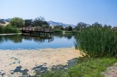 County Issues Notice of Preparation for Field & Pond EIR