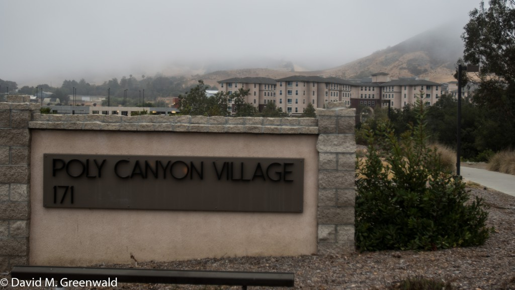 Foggy August morning in San Luis Obispo