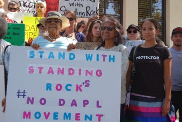 Davis Stands with Standing Rock