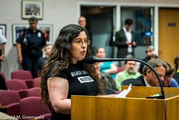 Two Dozen People Speak Out on Picnic Day Incident, Police Oversight During Public Comment