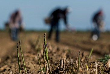 Agriculture (Finally) Scores Some Serious State Climate Funding