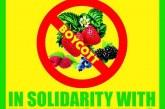 Letter: Boycott Driscoll's Berries