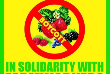 Letter: Boycott Driscoll's Berries