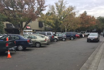 Council Does Not Make a Decision as Tensions Rise about Paid Parking Proposal