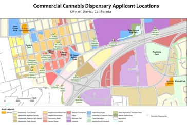 Council Selects Five Dispensaries for Initial Approval