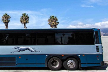 One Woman Who Knew Her Rights Forced Border Patrol off a Greyhound Bus