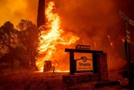 My View: Fires, Heat, the New Normal under Climate Change Sinks In