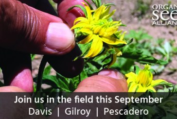 New Resources for California Organic Seed Growers