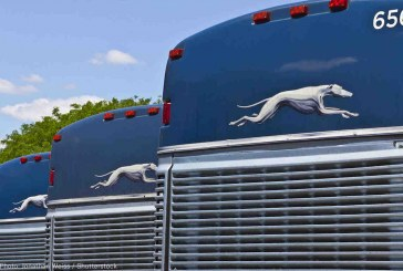 Greyhound's Role in Border Patrol Abuse