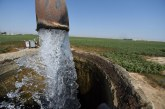 UC Davis Student-Written Legislation to Reduce Water Usage Introduced in the California State Assembly