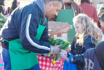 Food and Economic Development in Davis: Yolo Food Bank, Part 2 of 3
