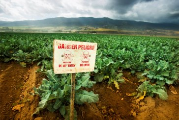 Gov. Newsom Bans Use of Brain-Damaging Pesticide in California