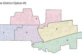 Guest Commentary: District and Incumbents