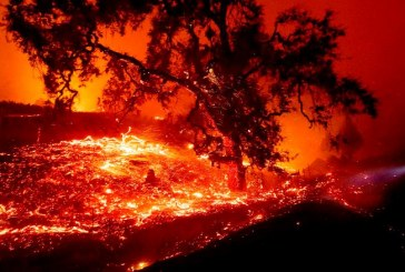 Commentary:  Wind, Fire, Power Outrages – Post Climate Change California's Normal?