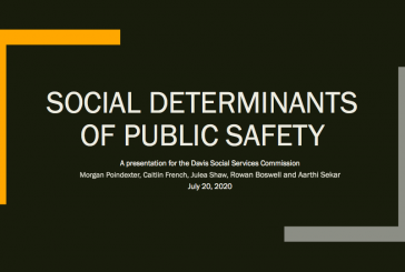 Social Determinants of Public Safety – Community Discussion on Re-Envisioning Public Safety and Policing
