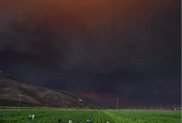 While Massive CA Fires Burn, Supervisors Declare a Climate Emergency, Commit to Justice and Mobilization