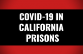 Outbreaks Persist in Folsom State Prison & Avenal State Prison – 109 & 208 New Active Cases Over Weekend Respectively – Breaking Down COVID-19 in CDCR