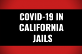 Weekly Testing Rate Drops By Twenty Percent at Sacramento County Jails – Breaking Down COVID-19 in CA Jails