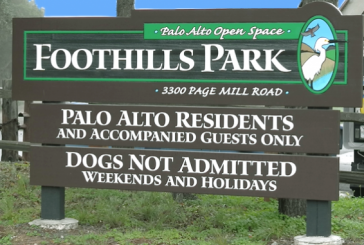 Civil Rights Suit Ends 55-Year-Old 'Vestige' of Palo Alto's 'History of Racial Discrimination' – Park Now Open to All