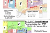 What District Am I In?  Handy Map of Both Council and School Board Districts