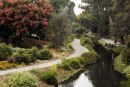 UC Davis Arboretum and Public Garden Invites Staff and Students to 'Adapting and Growing for the Future'