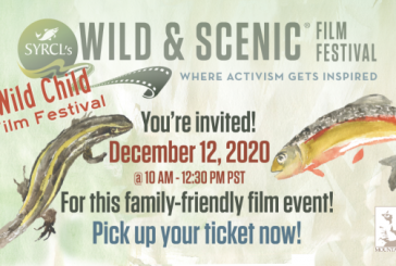 A Celebration Of Our Wildlife And Our Natural World!