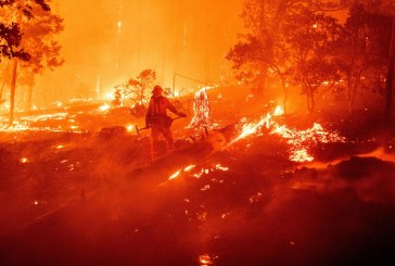 Deadly California Wildfire from Gender Reveal Party Results in Multiple Charges for Couple
