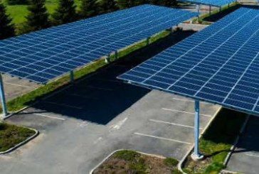 City Will Have to Weigh between Trees and Solar Panels at Sutter as Complaints Reign about Public Process