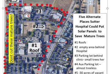 Guest Commentary: Five Places Sutter Hospital Can Place Solar Panels to Avoid Cutting (at least some of) Mature Trees